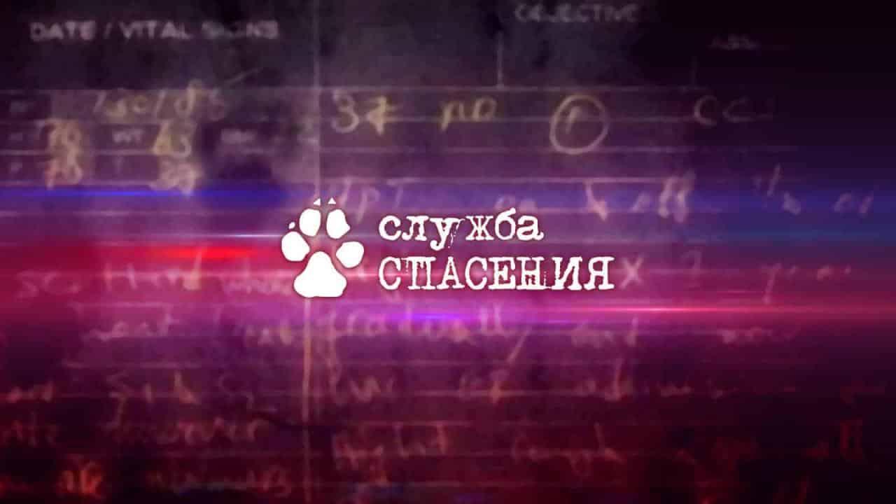 Служба спасения - Телеканал «Пёс и Ко»