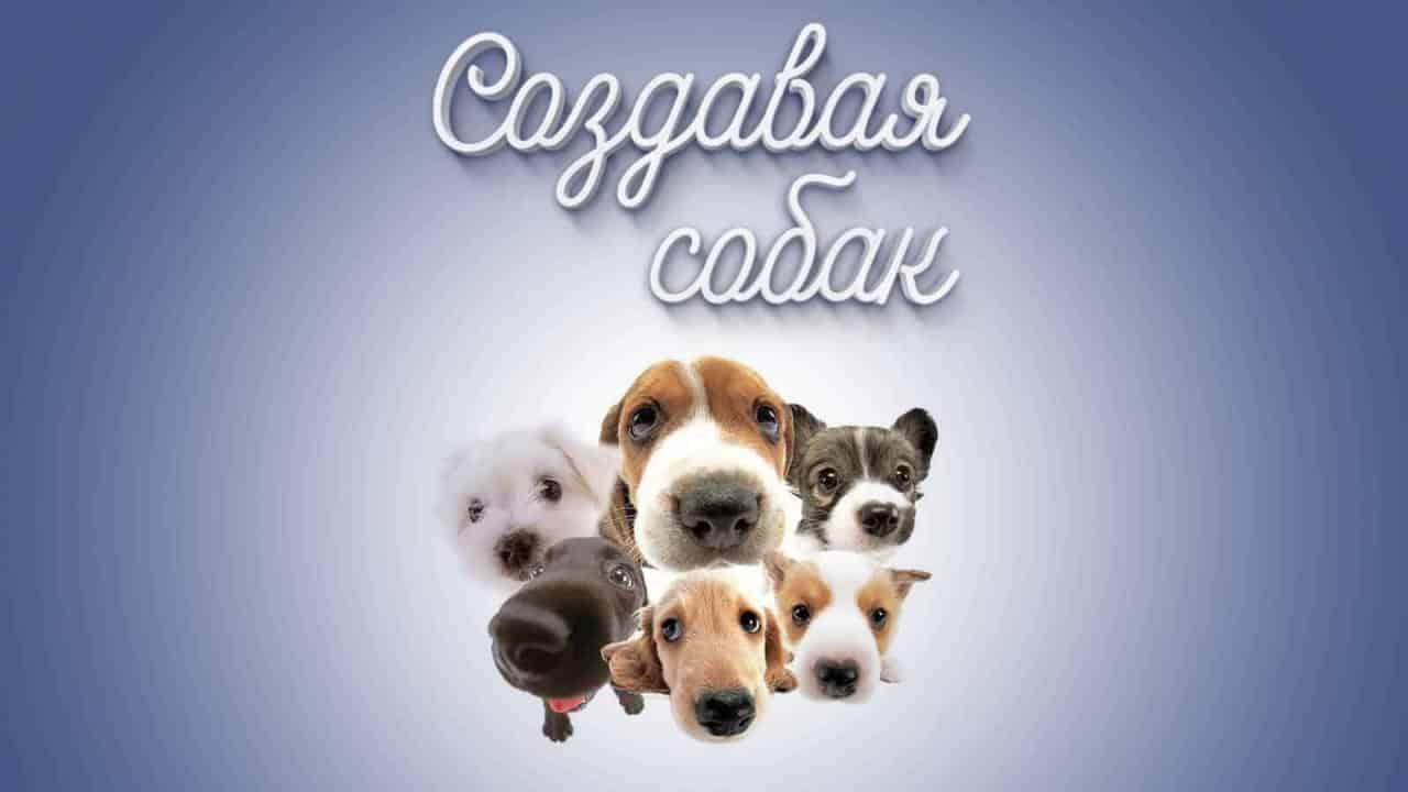 Создавая собак - Телеканал «Пёс и Ко»