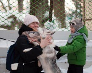 """Собака-обнимака Телеканал """"Пёс и Ко"""""""